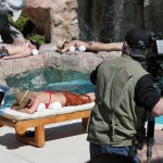On location in Las Vegas.  It was a tough day.